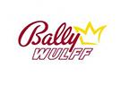 bally wulff paypal casino logo