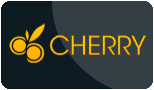 cherrycasino paypal logo