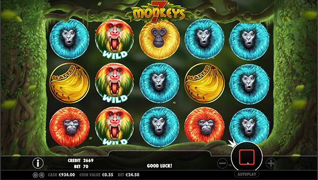7 monkeys übersicht