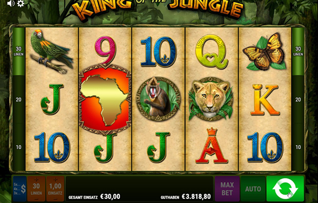 bally wulff paypal casino king of the jungle übersicht