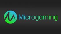 Microgaming paypal casino logo