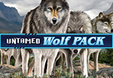 wolfpack microgaming paypal casino logo
