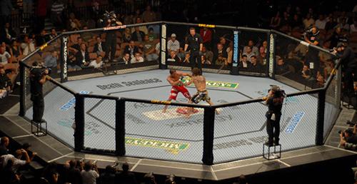 ppc_ufc_octagon_fighting